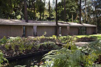 casa-L-dellekamp-arquitectos-sara-pereznieto-01