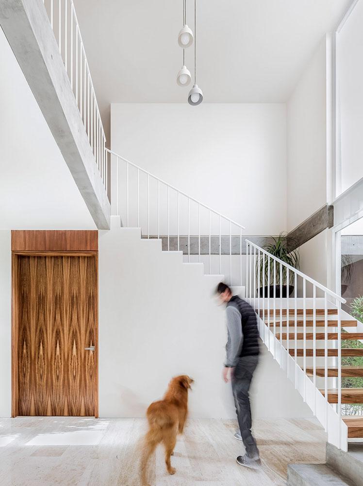 casa-maguey-intersticial-arquitectura-cesar-bejar-04