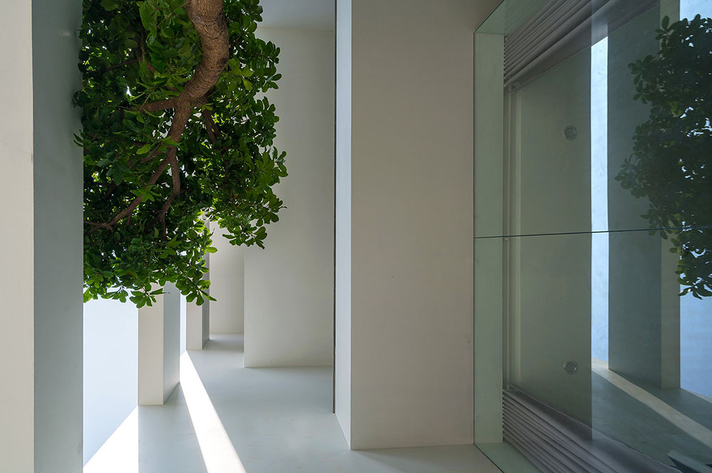 house-in-trees-Nguyen-Khac-Phuoc-Architects-Trieu-Chien-03