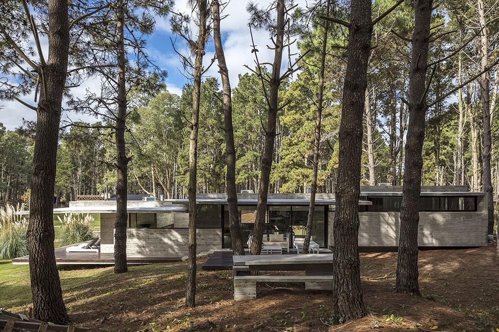 casa-bosque-besonias-almeida-Federico-Kulekdjian-05