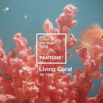 Living-Coral-Color-Pantone-2019-01