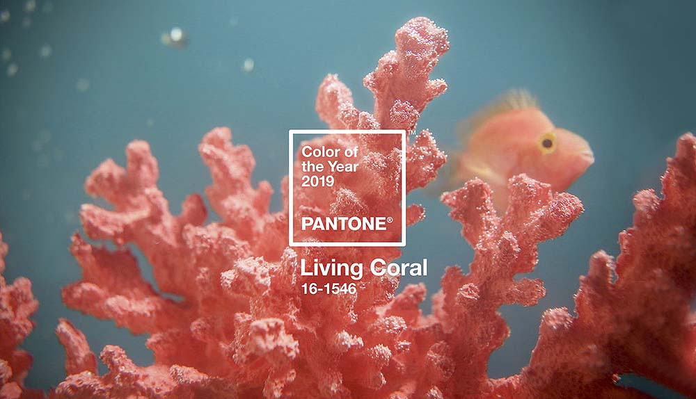 Living-Coral-Color-Pantone-2019-01