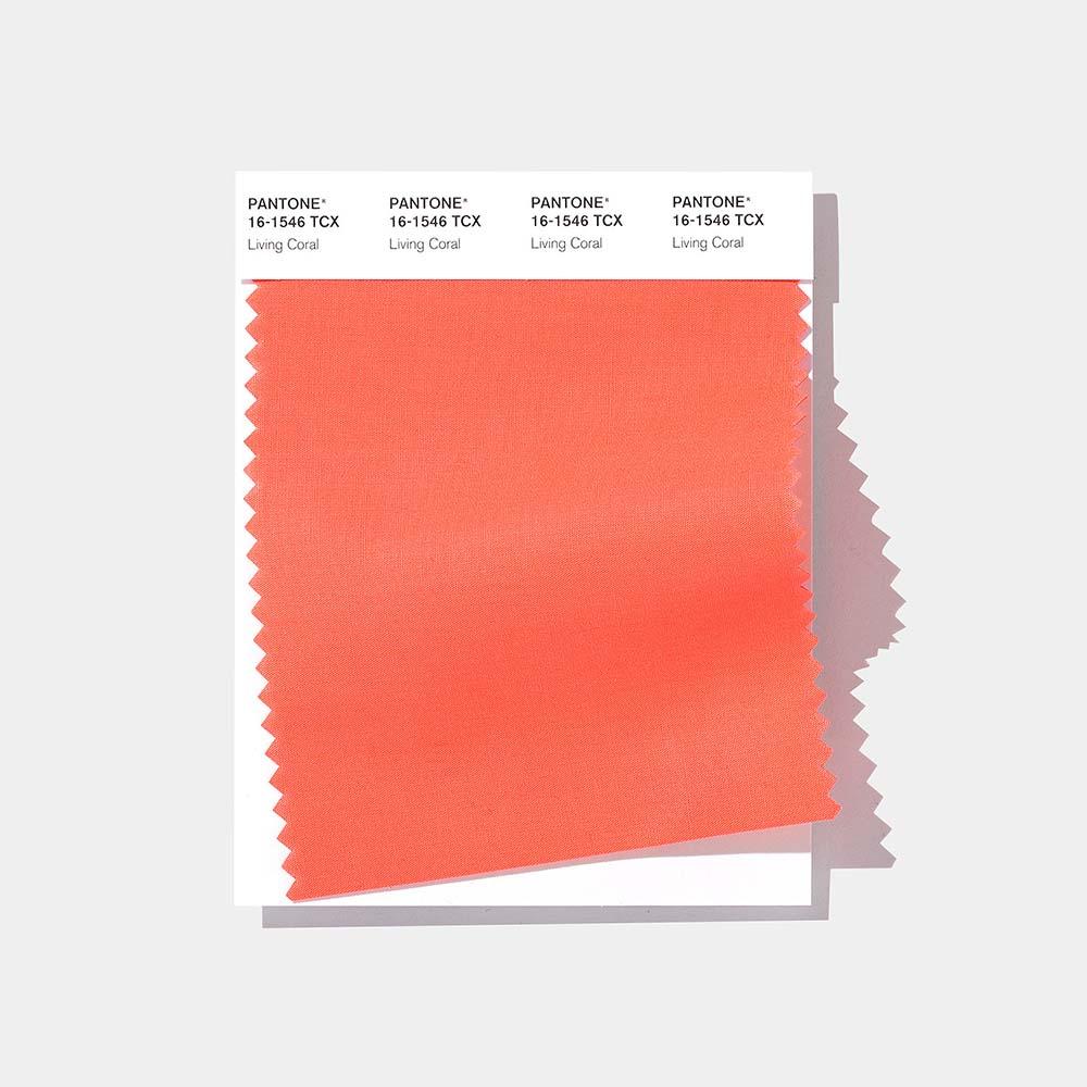 Living-Coral-Color-Pantone-2019-03
