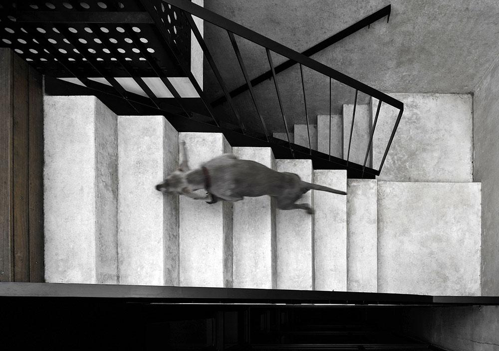Campbell-Street-DKO-Architecture-SLAB-07