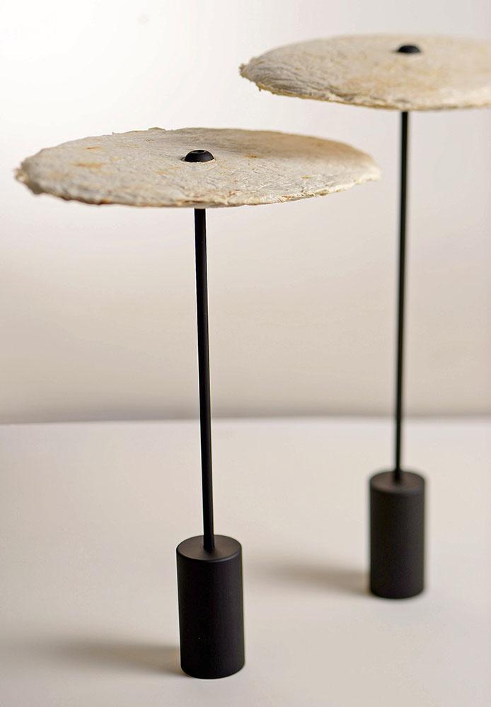 mycelium-nir-meiri-04