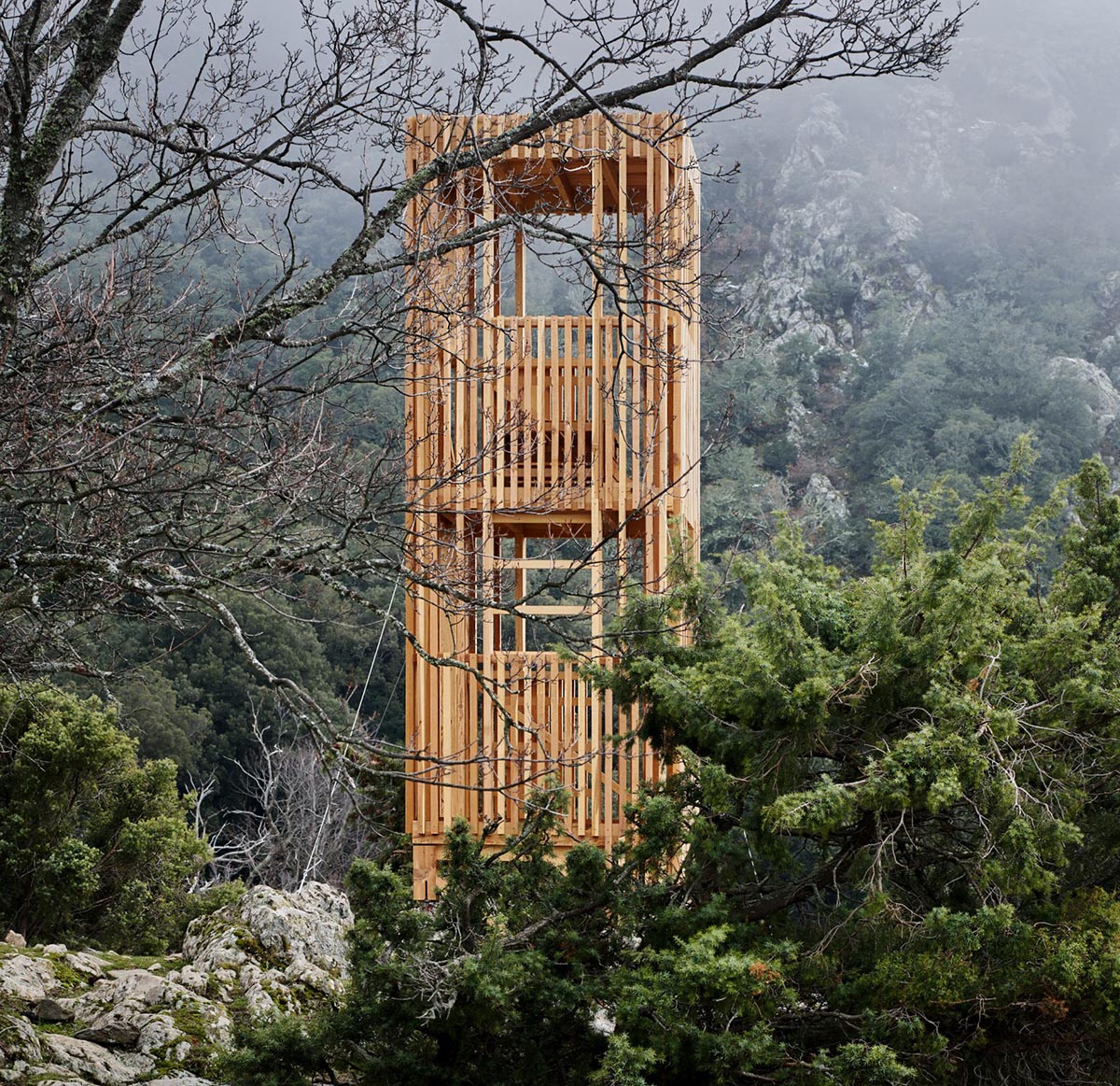 Observatoire-Cerf-Corse -orma-architettura-04