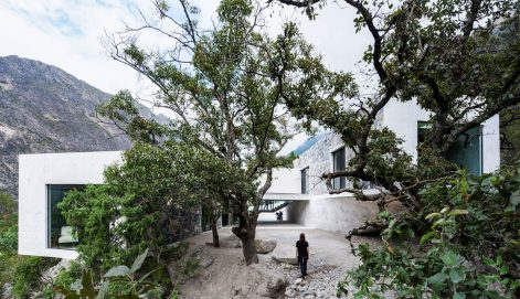 casa-bedolla-p-o-arquitectura-01