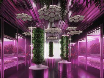 Gardening-Will-Save-The-World-Tom-Dixon-Ikea-08
