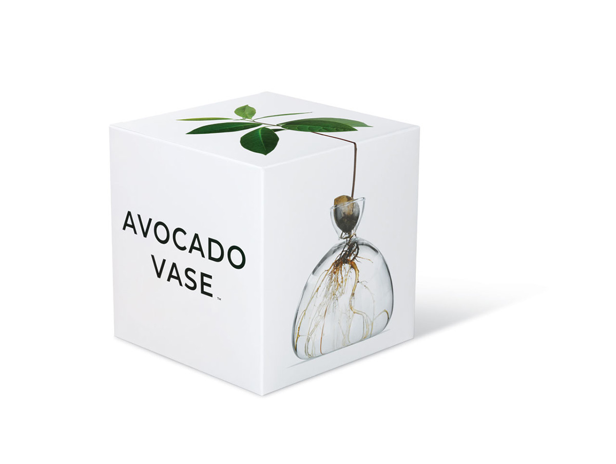 Avocado-Vase-Ilex-Studio-04