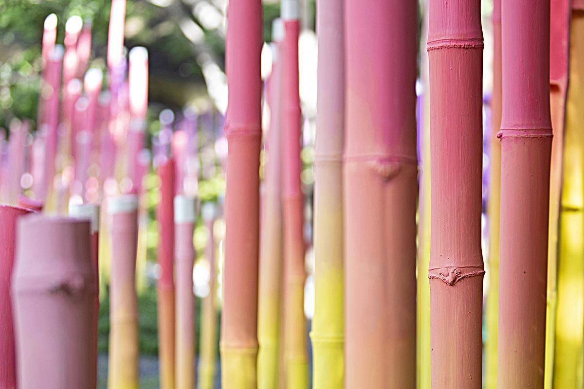 Parque-O2-Taller KEN-Andres-Garcia-05
