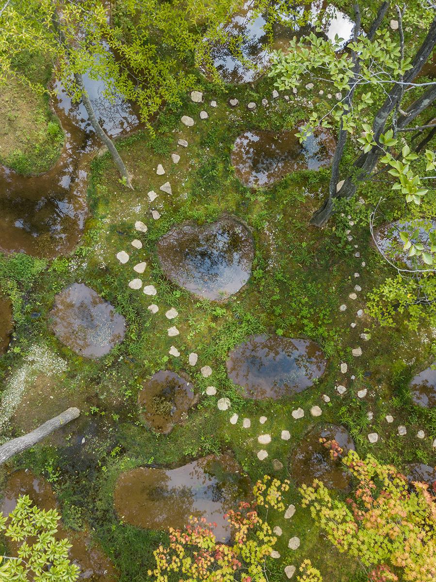 Art-Biotop-Water-Garden-Junya-Ishigami-Nikissimo-03