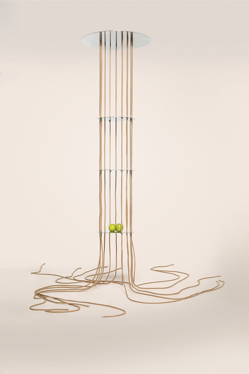 Raizes-Furf-Design-Studio-Antonio-Wolff-05