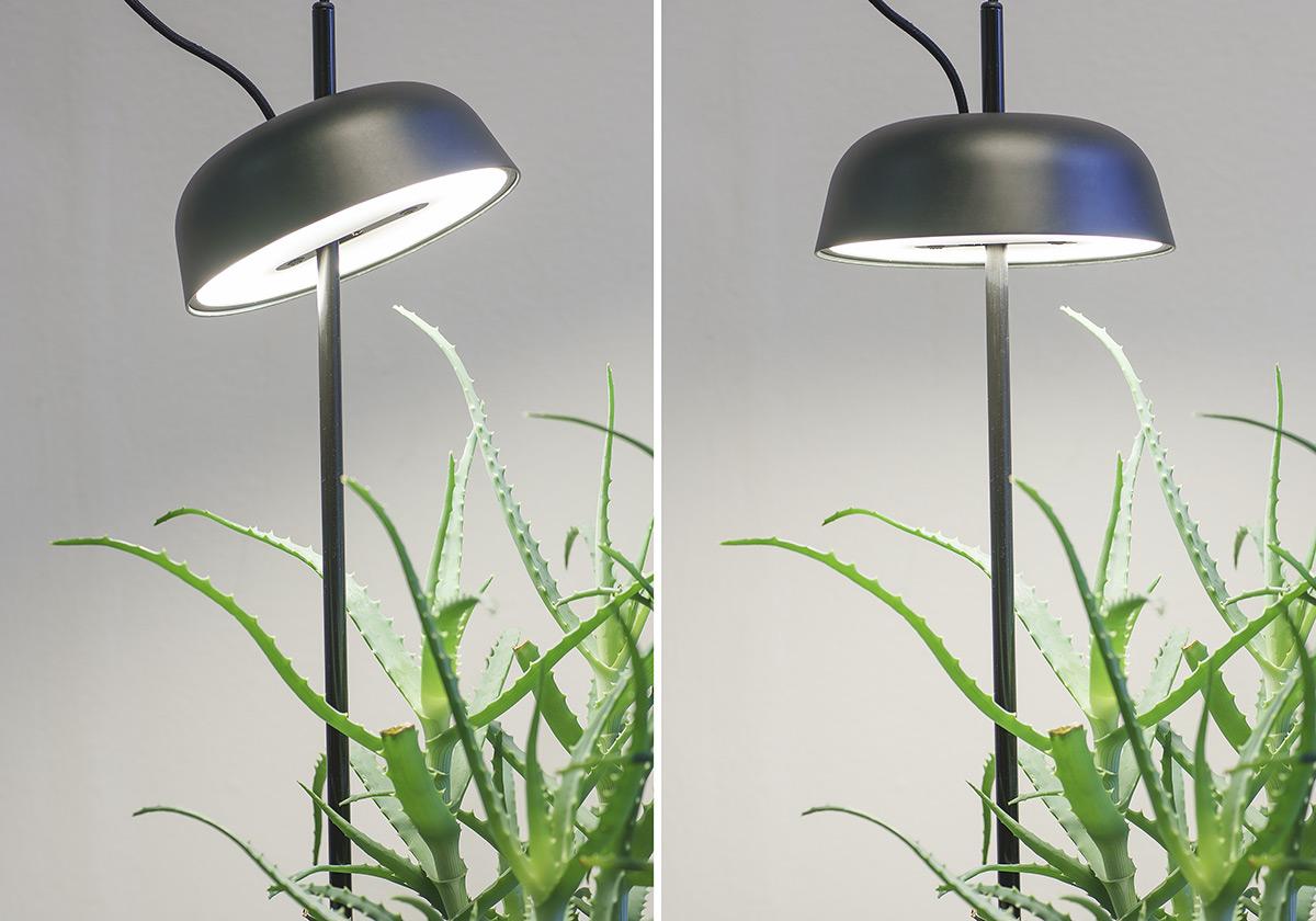 ki-light-hallgeir-homstvedt-3