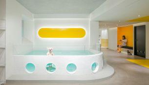 Nova-Pets-Say-Architects-Minjie-Wang-04
