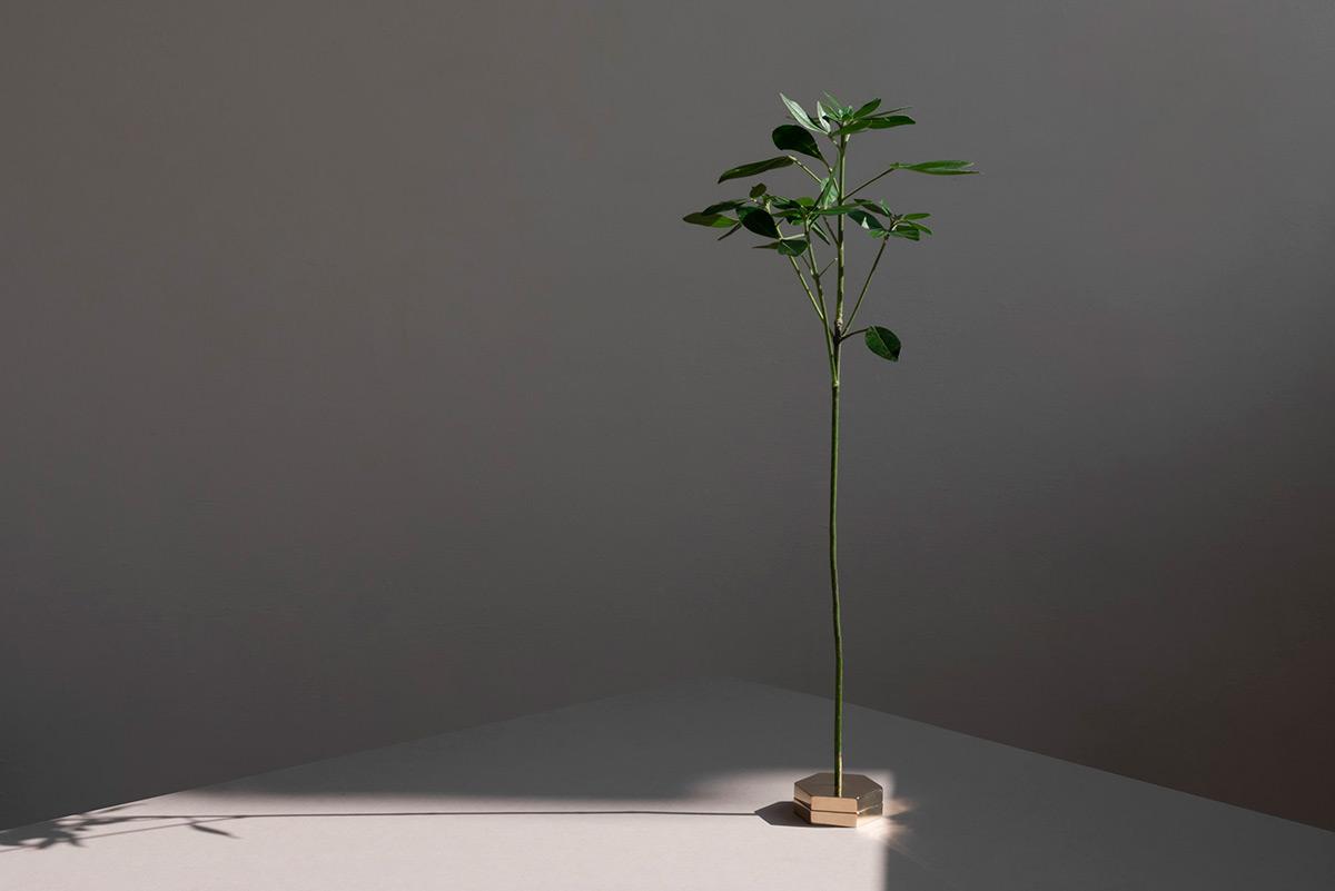 No-Vase-Moises-Hernandez-02