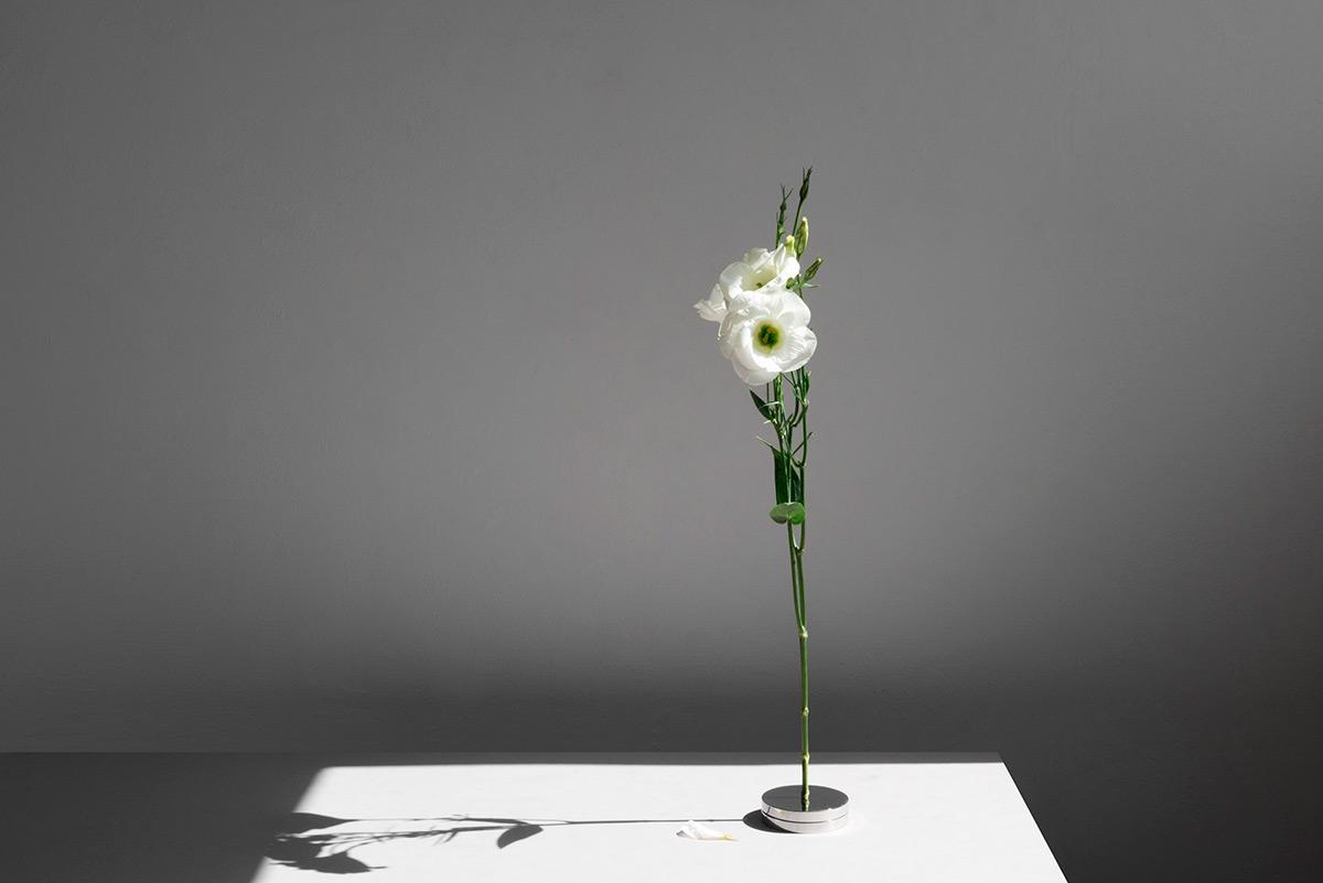 No-Vase-Moises-Hernandez-03