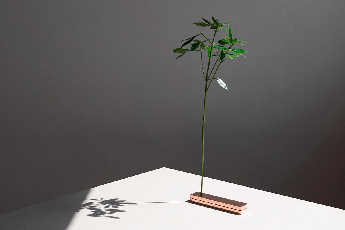 No-Vase-Moises-Hernandez-07