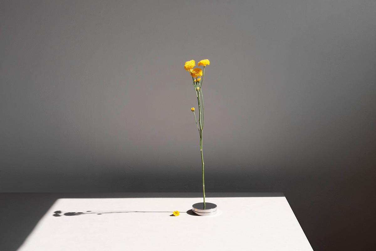 No-Vase-Moises-Hernandez-08