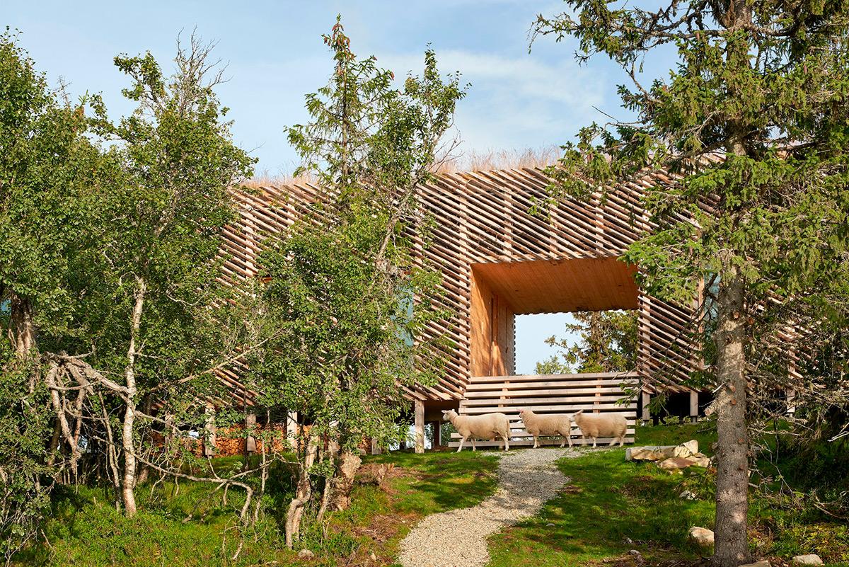 Skigard-Hytte-Mork-Ulnes-Architects-Bruce-Damonte-04