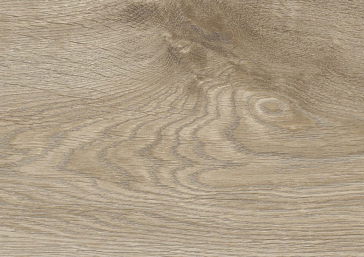 Eurus Oak 2