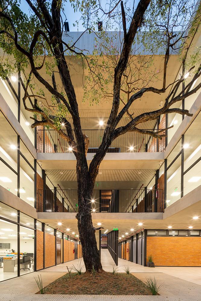 Colegio-ASA-STEAM-Equipo-Arquitectura-Leonardo-Mendez-06