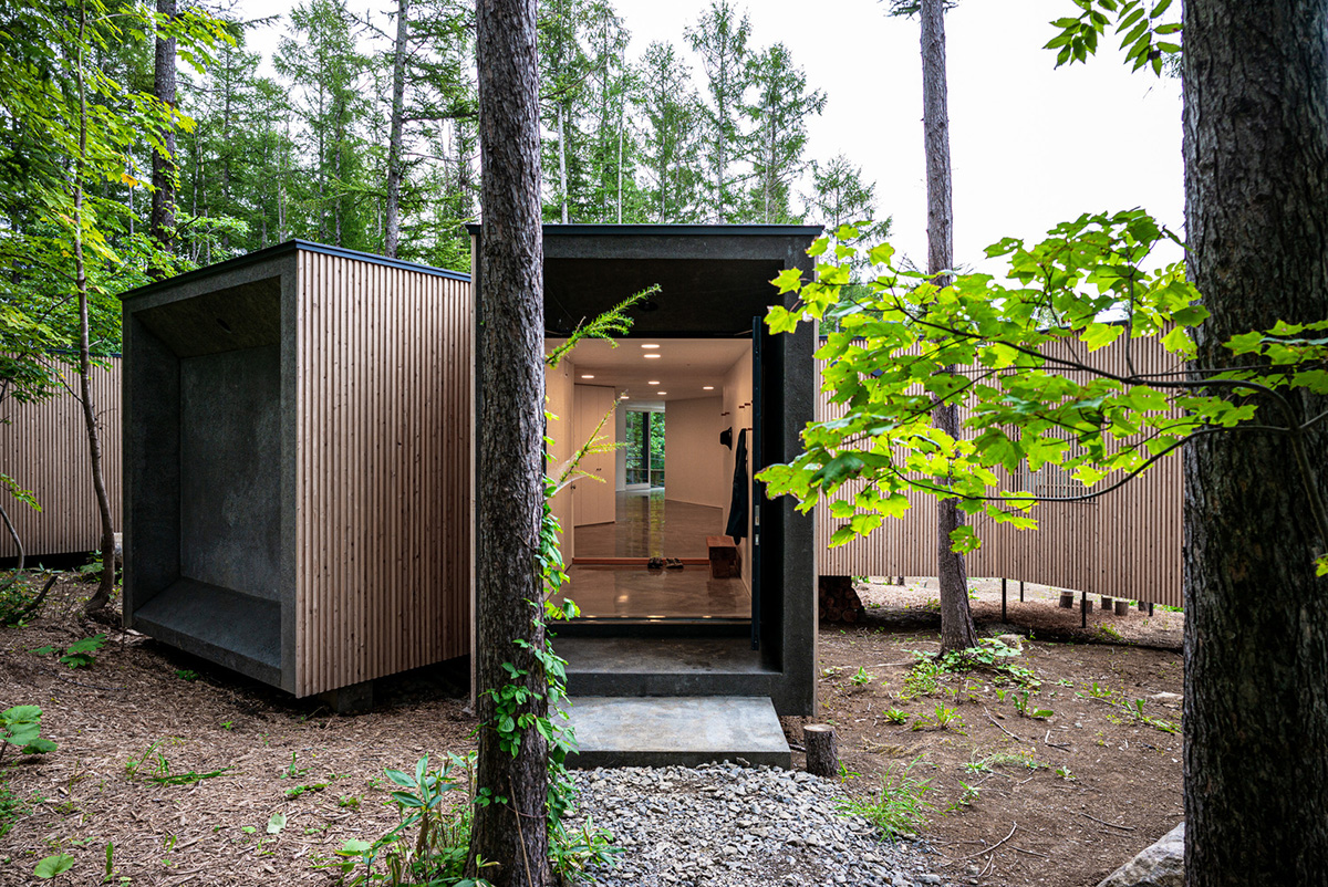 House-in-the-Forest-Florian-Busch-Architects-03
