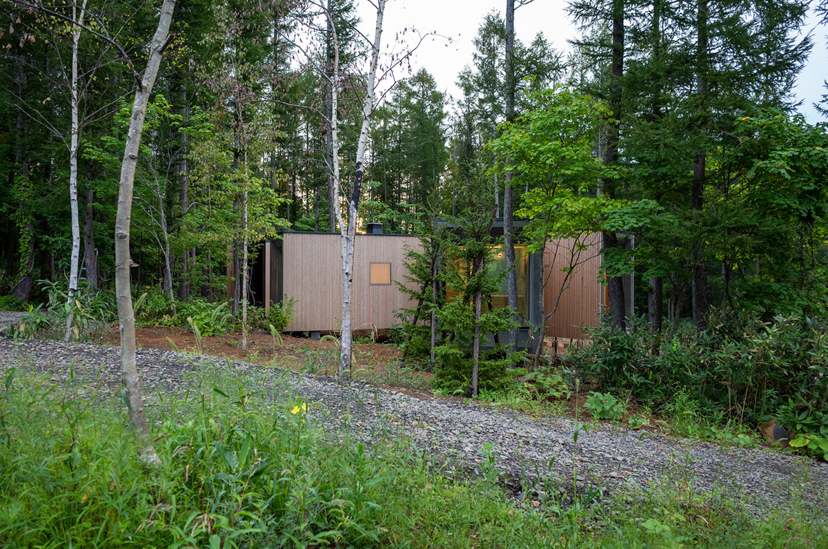 House-in-the-Forest-Florian-Busch-Architects-05