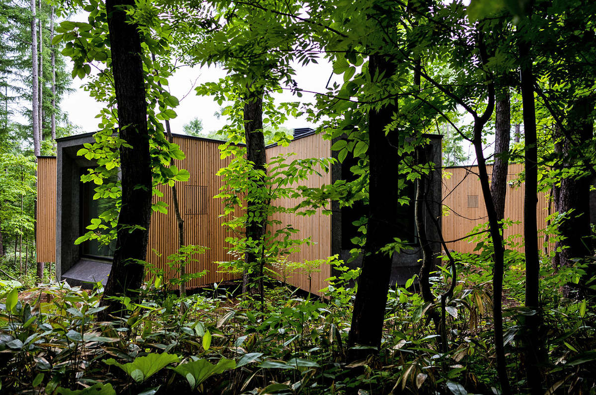 House-in-the-Forest-Florian-Busch-Architects-06