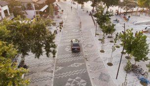 Albanian Carpet-Casanova+Hernandez (2)