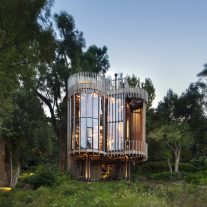 Tree House- Malan Vorster