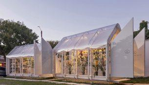 Greenhouse-Orchid-Mateo-Nunes-Da-Rosa-Marcos-Guiponi-01