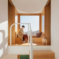 Puppeteers House REDO architects 05