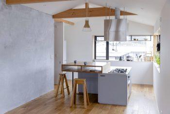 Iwakura-House-ALTS-Design-Office-IPT-07