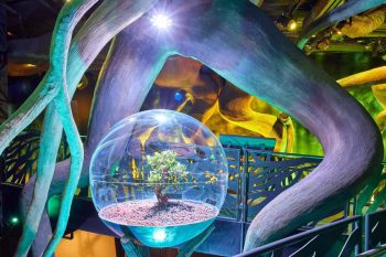 Expo-Dubai-Terra-Grimshaw-06